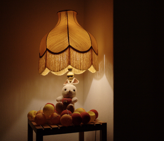 Cute animal resting on coloured balls under lamp