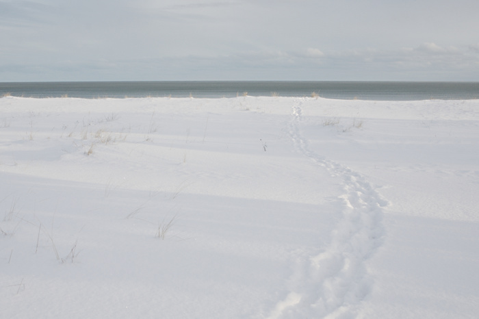 Footprints in the snow, leading towards the sea and the empty sky
