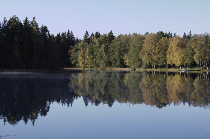Still lake mirroring autumn trees