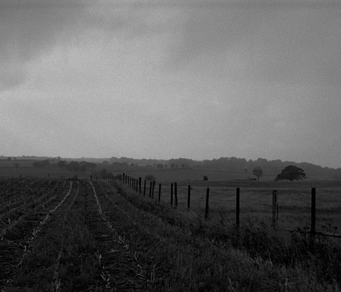 Foggy landscape, field, fence, and distant trees, cloudy sky.