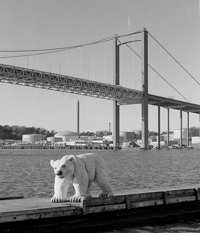 Polar bear sculpture, water, and bridge in the background