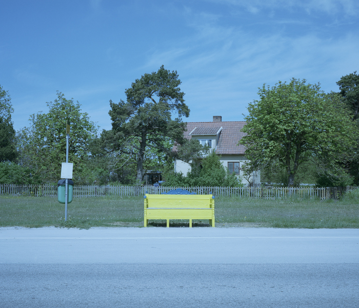 Countryside bus stop with an all-yellow bench. House, garden and trees in the background, the road in the foreground.